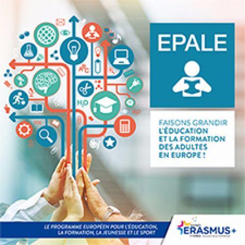 Plateforme électronique pour l'éducation et la formation des adultes en Europe